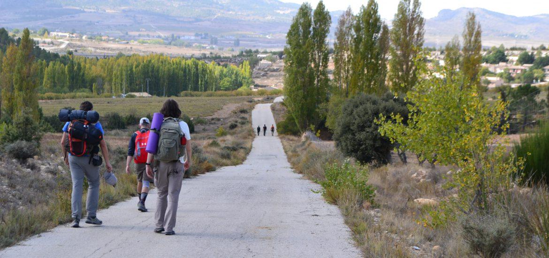 Dos grupos de senderistas camino de El Sabinar GR 7
