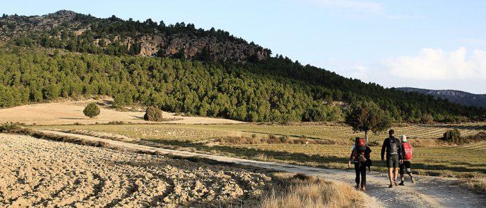 Montaña y grupo senderista por camino