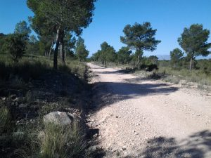 GR 7 Sierra de Benis