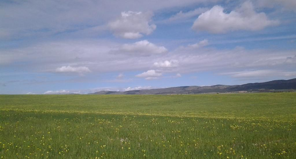 GR 7 Primavera